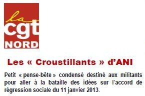 UD CGT Nord - ANI dans Actions_nationales croustill