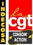 INDECOSA CGT - mobilisation des personnels de la DGCCRF les 21 mars et 6 avril 2013. dans Actions_nationales indecosa-france-110x150
